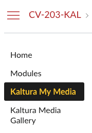 Highlighting the Kaltura My Media link in the left hand navigation