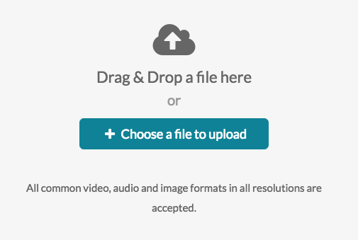 Highlighting the Choose a File to Upload Button